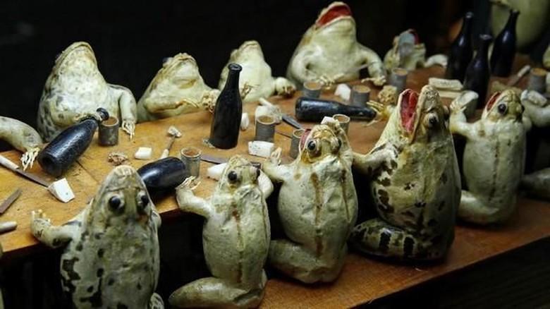 Foto: The Frog Museum di Swiss (REUTERS/Denis Balibouse)