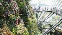 Taman Kaca Terindah di Singapura