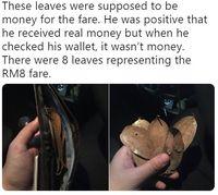 Cuitan @Nadnarcotic di Twitter yang mengisahkan suaminya selaku driver taksi online dibayar pakai daun.