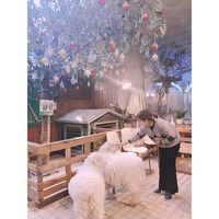 Catat! Ini Dia 6 Kafe Hipster yang Instagramable di Seoul