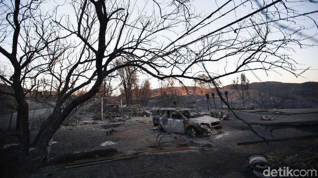 56 Orang Tewas dan 130 Lainnya Hilang Akibat Kebakaran Hutan AS