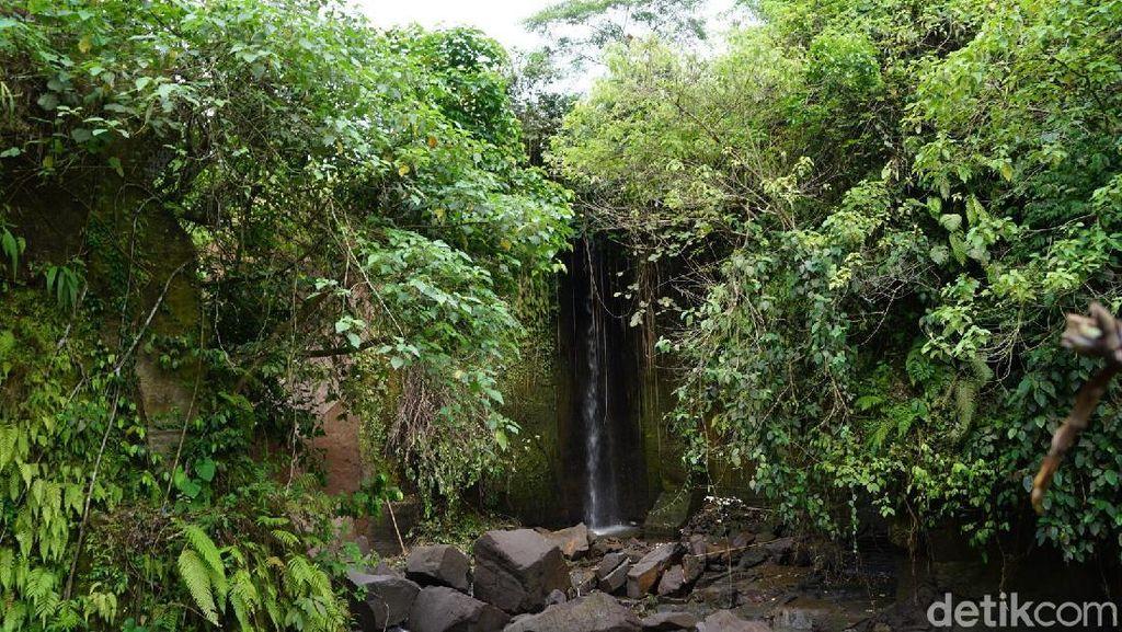 Air Terjun Kemenuh & Semerbak Bunga Bangkai di Bali