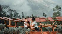 Taman Edelweiss, Destinasi Baru Instagramable di Bali