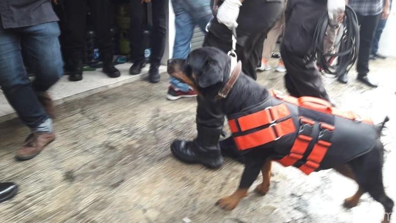 Anjing Pelacak Dikerahkan ke TKP Pembunuhan Sekeluarga di Bekasi