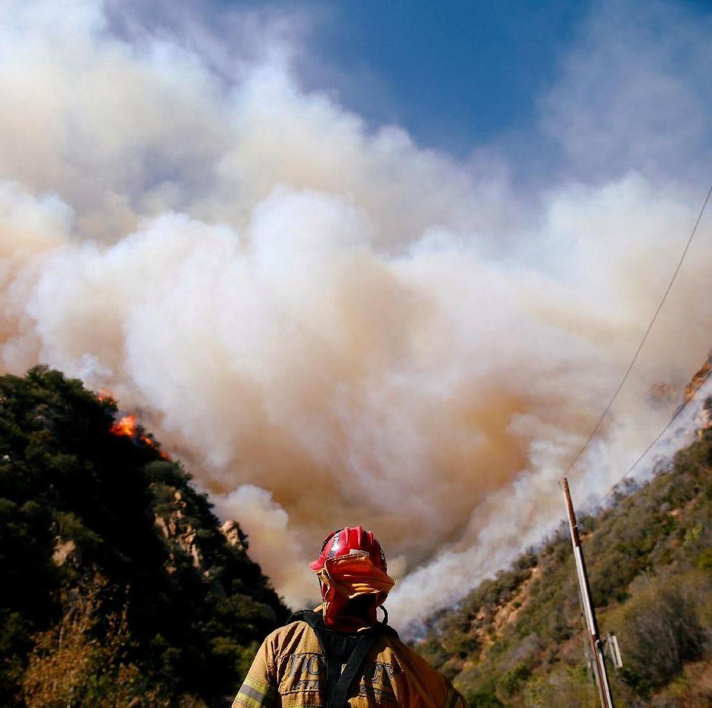 Penyelamatan Dramatis di Tengah Kebakaran California