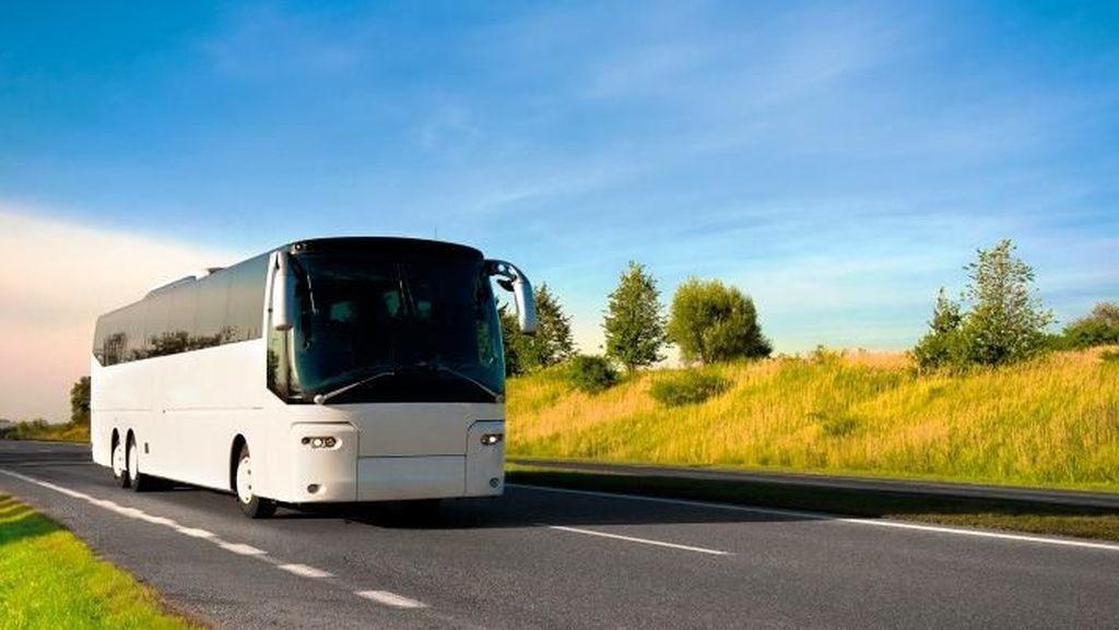 Naik Bus Nyaman Saat Traveling, Baca Dulu 6 Tips Ini