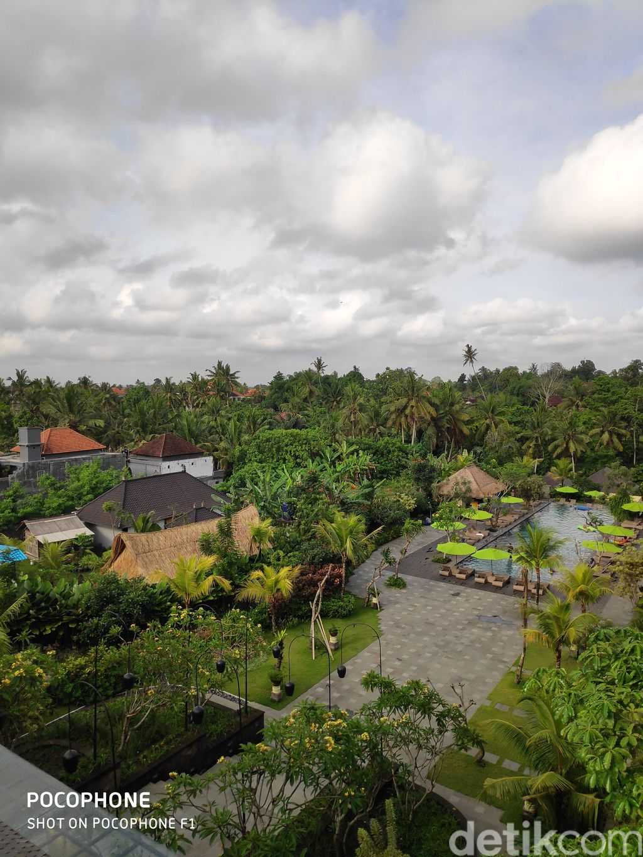 Pemandangan alam di kawasan Ubud, Bali di pagi hari. Pocophone F1 memiliki dua kamera belakang, dengan resolusi 12 dan 5 megapixel.(Foto: detikINET/Josina)