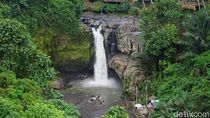 Rekomendasi Tempat Wisata di Ubud: Air Terjun Tegenungan