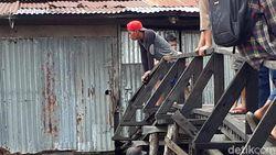 Belum Bisa Dievakuasi, Harimau Terjebak di Kolong Ruko Diberi Ayam