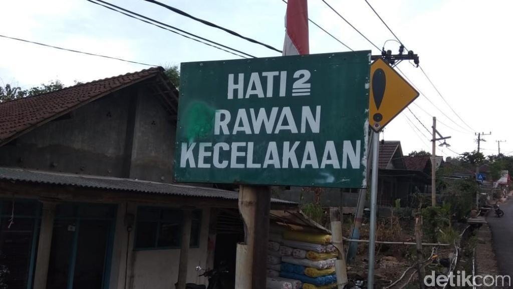 Banyak Hewan Nyeberang, Pemudik di Lintas Sumatera Harus Waspada