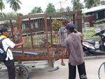 Tim BBKSDA Riau Tiba di Lokasi Harimau Terjebak di Kolong Ruko