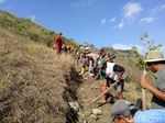 Minimalisir Longsor di Trenggalek, Warga Tutup Retakan Tanah