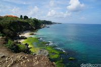 Pantai Tegal Wangi dari ketinggian (Syanti/detikTravel)