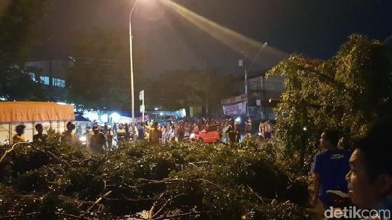 Pohon Tumbang di Semarang Timpa Motor yang Melintas