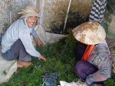 Liburan Murah ke 3 Nusa di Bali
