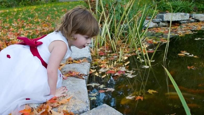 Ilustrasi anak main di kolam/ Foto: iStock