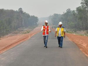 Jalan Kaki Jajal Trans Papua, Jokowi: Saya Ingin Lihat Langsung