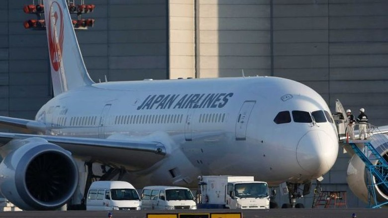 Maskapai Jepang Larang Pilot Minum Alkohol 24 Jam Sebelum Terbang