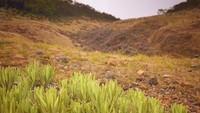 Penutupan Gunung Gede Pangrango Diperpanjang untuk Cegah Corona