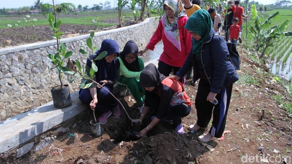 Butuh 24 Juta Pohon Pulihkan Lahan Kritis di DAS Citarum