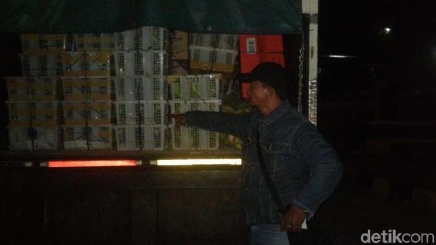 Petugas Gabungan Gagalkan Penyelundupan Puluhan Ribu Burung