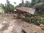 Banjir di Aceh Utara Meluas, Ratusan Tanaman Padi Mati