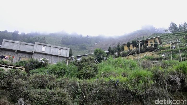 Bupati pun Hilang Jabatan di Kampung Hilang Sigandul Dieng