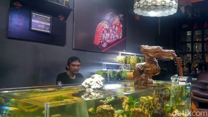 Foto: Buyung, pebisnis Aquascape (Achmad Dwi Afriyadi-detikFinance)