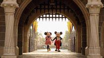 Saingi Netflix, Disney Rilis DisneyPlus