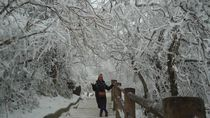 Puncak Emas dan Winter Wonderland di Gunung Emei China