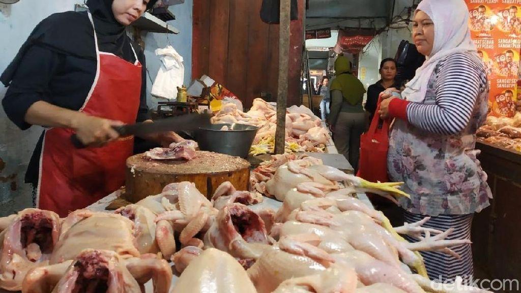 Pengusaha Tolak Keras Impor Daging Ayam Brasil