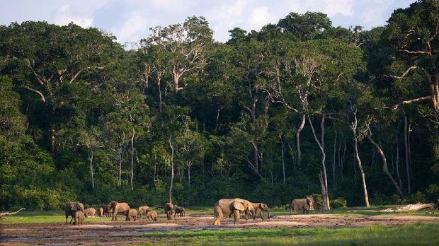 Negara 'Berbahaya' dengan Suguhan Alam yang Cantik