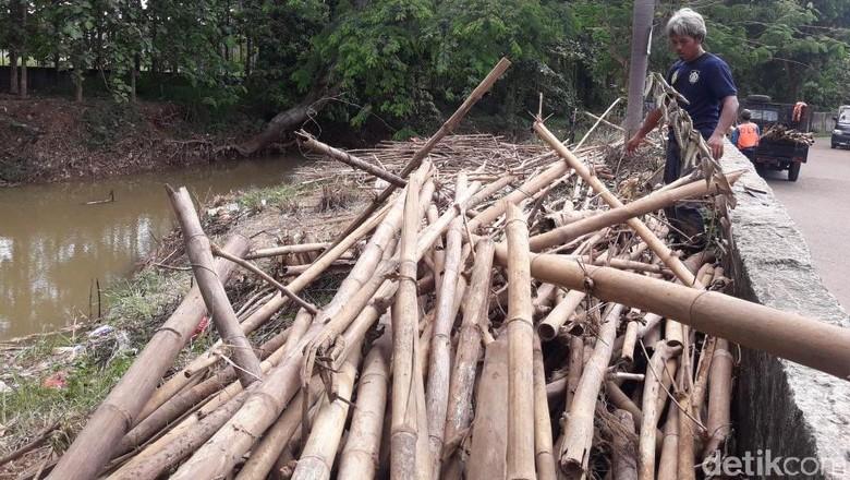 Sampah Batang Bambu Penuhi Kali Cikeas