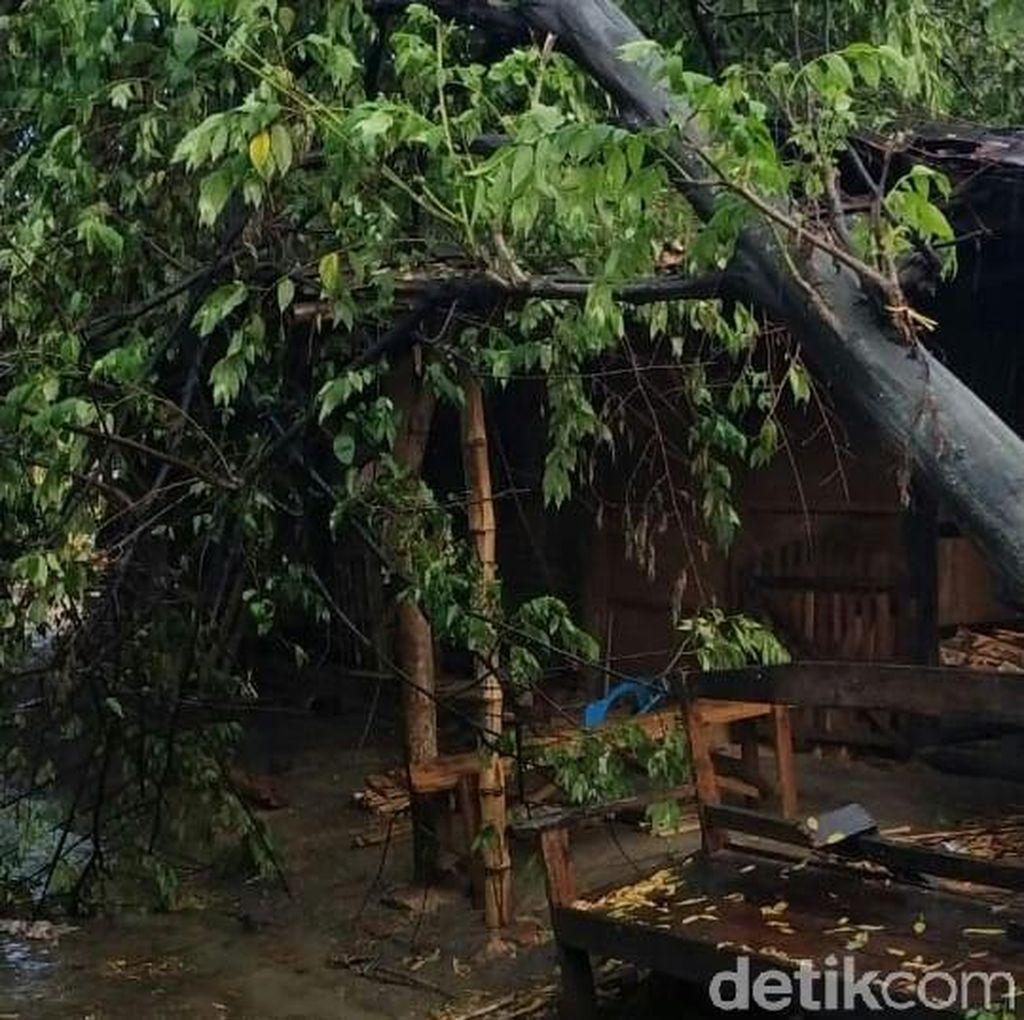 Hujan Deras Disertai Angin Kencang Landa Grobogan