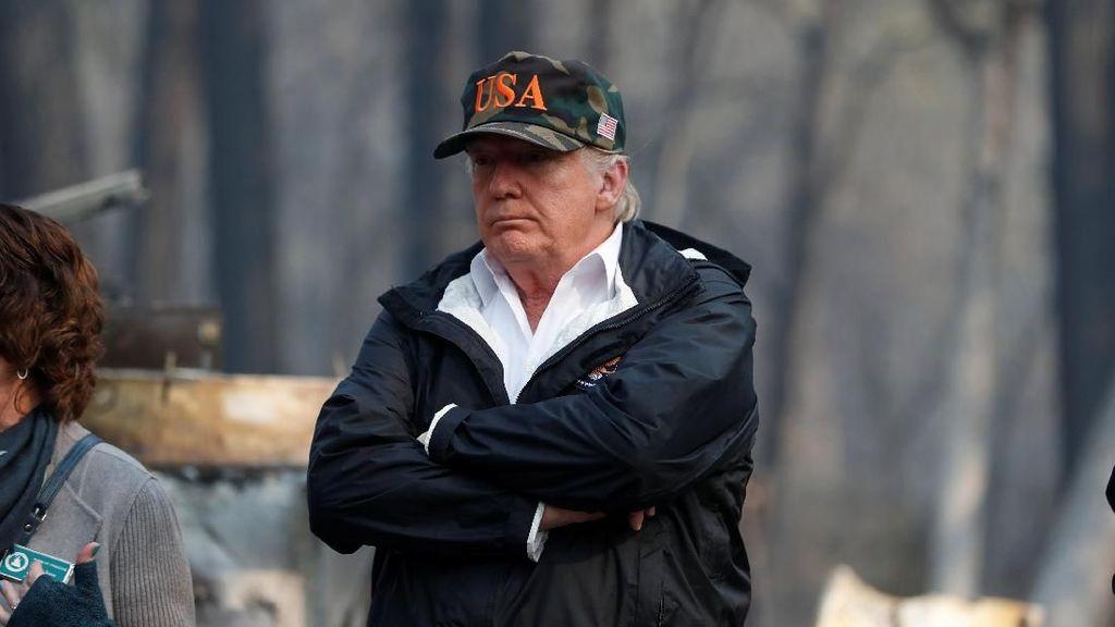 Trump Berkomitmen Perbaiki Manajemen Pemeliharaan Hutan
