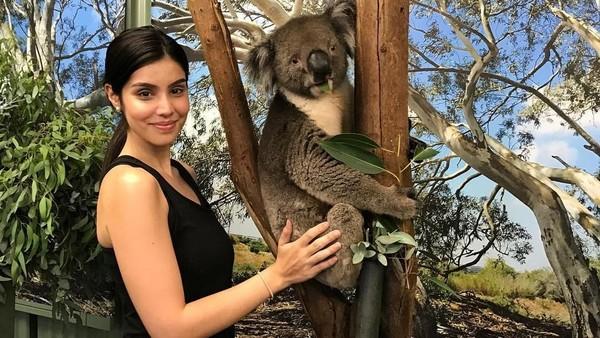 Tak cuma cinta dengan pantainya, Kat juga cinta dengan koala yang menggemaskan ini. (Instagram/@katramnani)