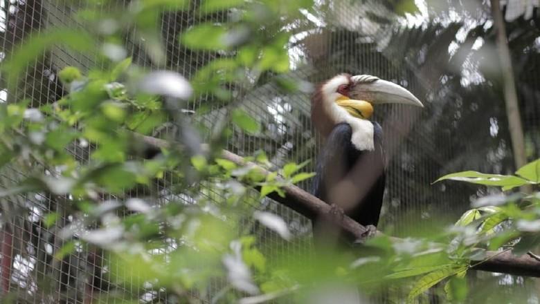 Foto: dok. Royal Safari Resort