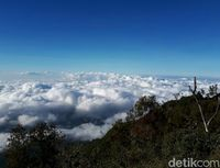 Geopark Gunung Rante (Ardian Fanani/detikTravel)