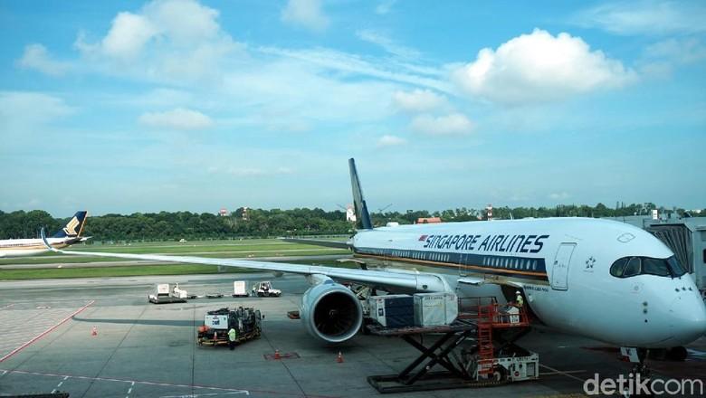 Pengalaman naik kelas ekonomi rasa bisnis A350-900 milik Singapore Airlines (Melissa Mailoa/detikTravel)