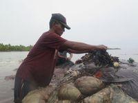 Kurangi Sampah Plastik, Turis ke RI Kena Pungutan US$ 10