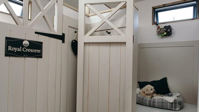 Hotel khusus anjing di Wiltshire, Inggris (Bath Country Pets)