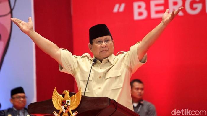 Prabowo Subianto (Lamhot Aritonang/detikcom)