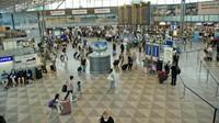 Bandara Helshinki Mulai Pakai Jasa Anjing untuk Deteksi Corona