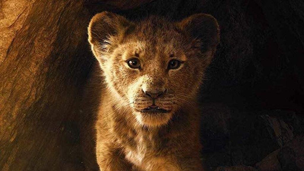 Menanti The Lion King dan Keindahan Kilimanjaro