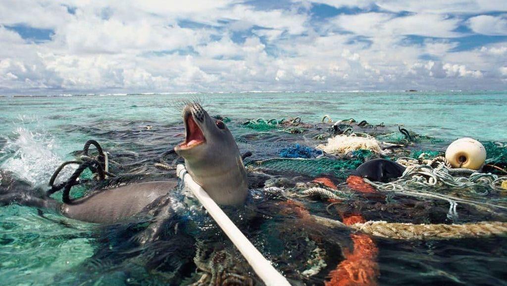 Data Mengerikan soal Sampah Plastik di Lautan