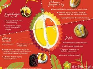 Ini 4 Jenis Durian Khas Kalimantan yang Populer