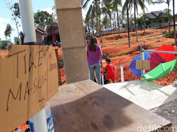 Setelah masuk, pengunjung bisa foto-foto sepuasnya dan tidak dibatasi waktu (Pradito Rida Pertana/detikTravel)