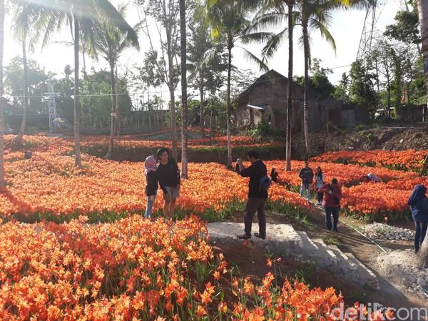Wisatawan yang berkunjung pun tak melewatkan kesempatan foto-foto (Pradito Rida Pertana/detikTravel)