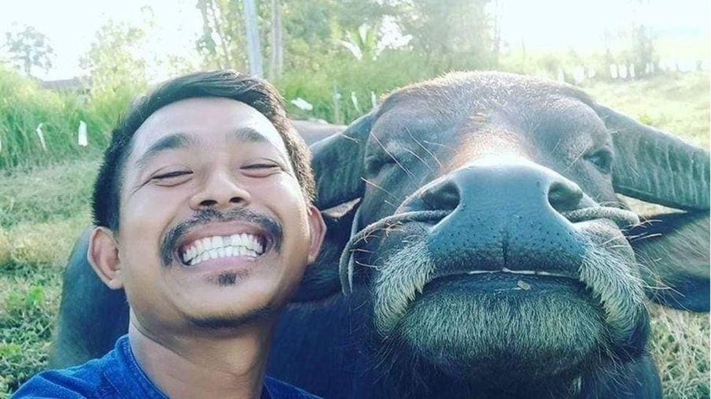 Viral Persahabatan Petani Thailand dan Kerbau yang Berakhir Manis