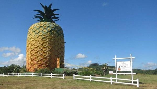Inilah bangunan nanas raksasa, The Big Pineapple di Summerhill Estate, pinggiran kota Bathurst, Eastern Cape, Afrika Selatan. Tingginya 16,7 meter (Kate Whitehead/CNN)
